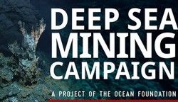 Seabed mining in PNG: environmental experiment, false hope of economic returns