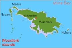 Rettet den Woodlark Kuskus in Papua-Neuguinea!
