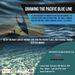 Keine Zerstörung der Ozeane im Namen des Klimaschutzes