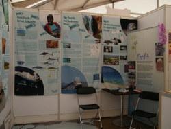 Die Ausstellung zu Ressourcen und Bergbau